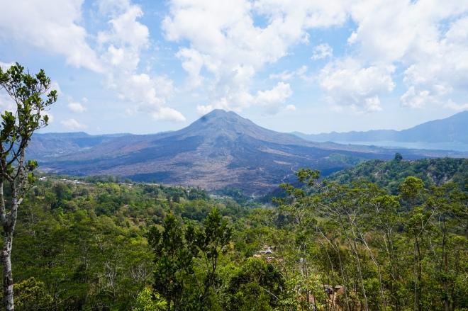 View of Mt Batur